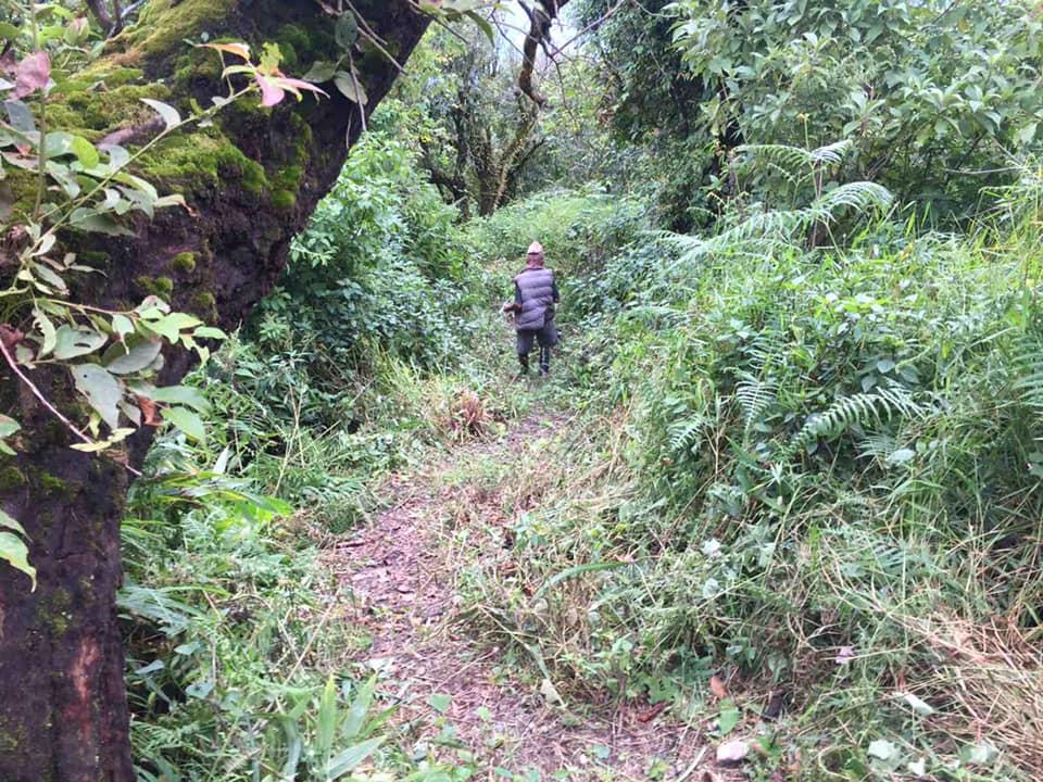 Gorkha Heritage Trek is cleared after Monsoon. Next week the first trekking grou…
